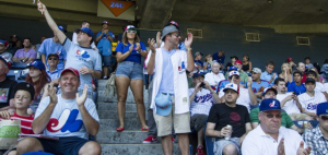 Expos Fans in TO